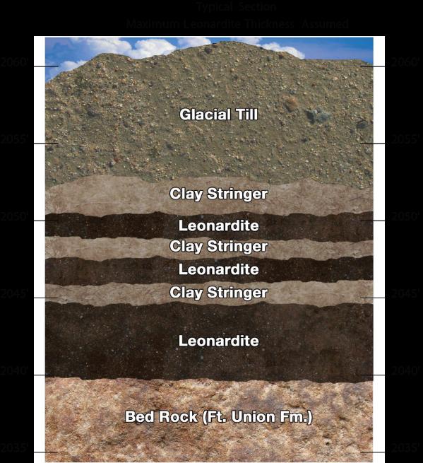Leonardite Strata - Typical Section